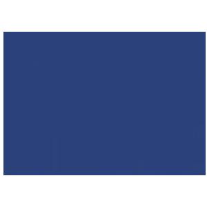 ALP Fingerboard
